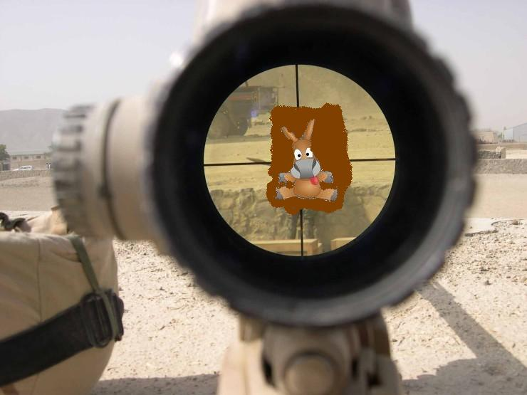 sniperl555.jpg